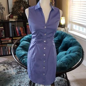 Theory Blue Button Down Dress